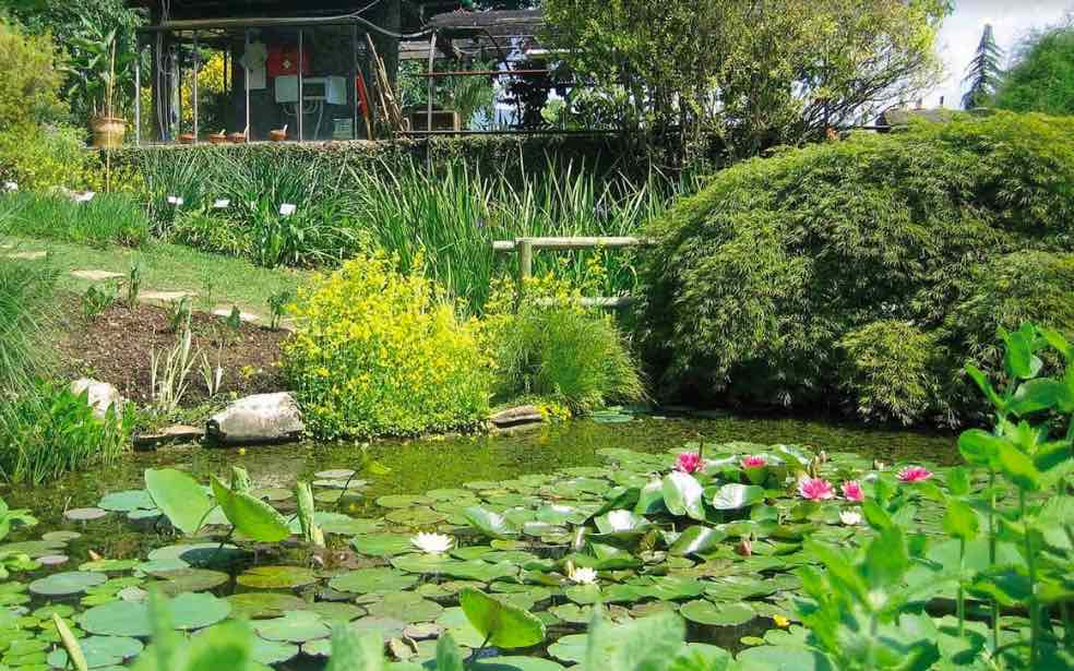 The Fascination of Plant Day, le iniziative in Lombardia