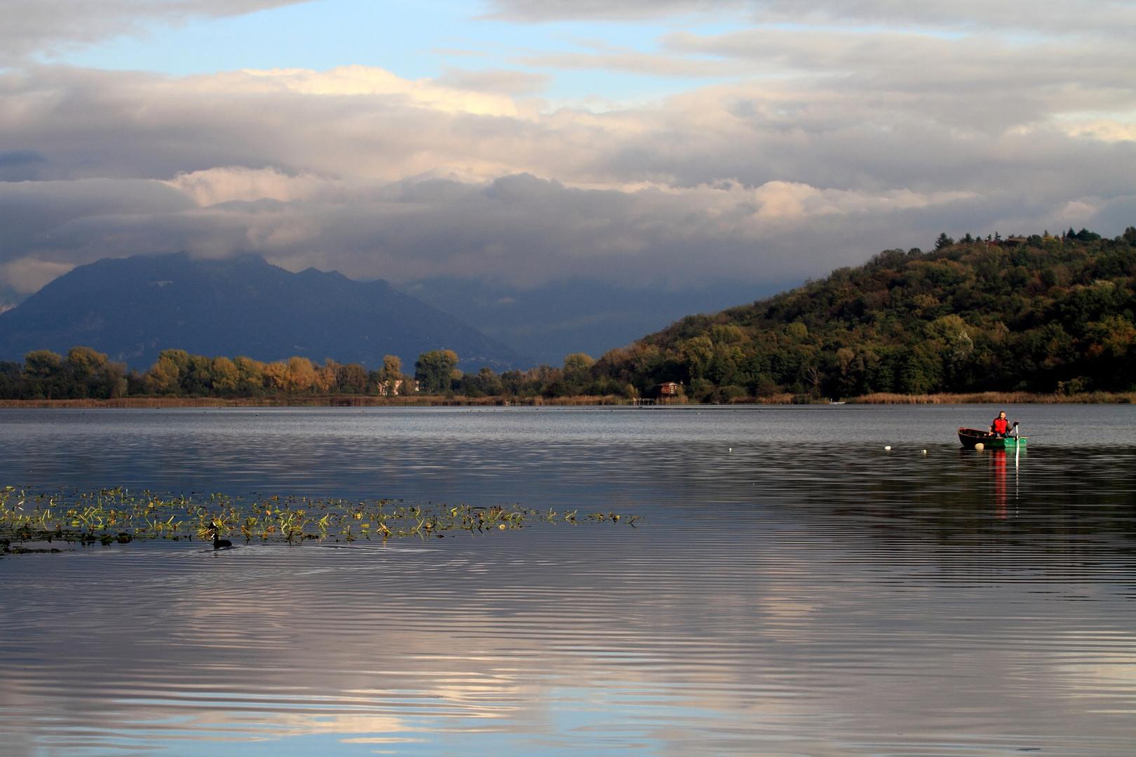 BioBlitz, 14 eventi in tre giorni nel Parco Lambro