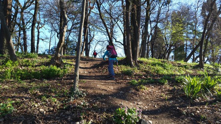 Weekend di corsa sul Sentiero del Carso Bresciano