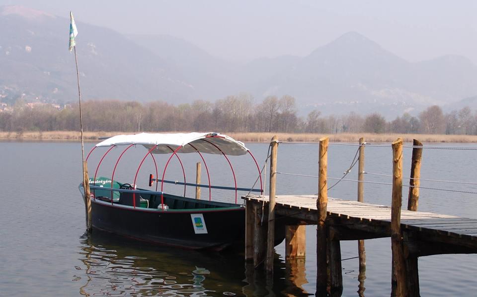 Escursioni sul lago di Alserio