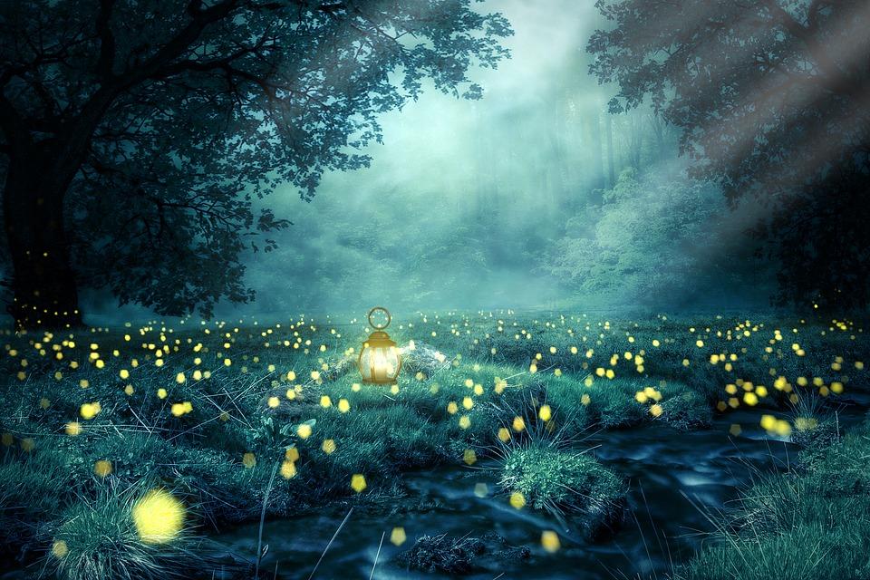 Alla ricerca delle lucciole nella valle del Lura