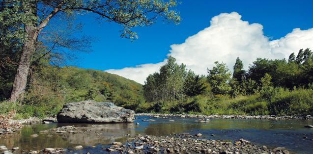 Bioblitz nella valle del Lambro