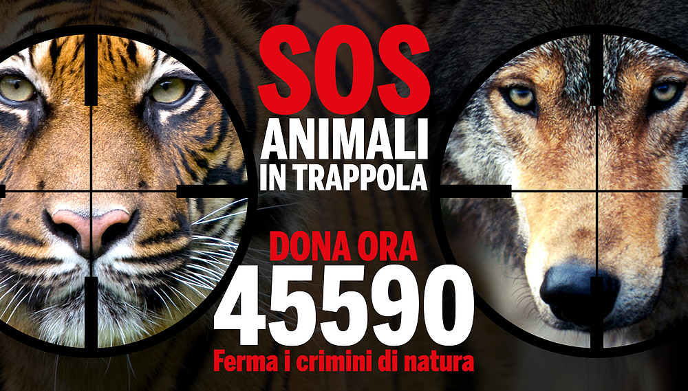 Wwf: Giornata delle Oasi per aiutare gli animali in pericolo