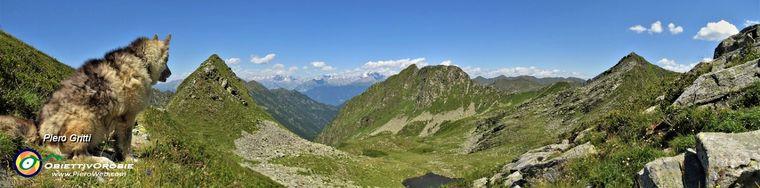 38958_63-vista-panoramica-dalla-bocchetta-di-budria-_2216-m_-verso-la-orobie-valtellinesi-e-le-alpi-retichejpg.jpg