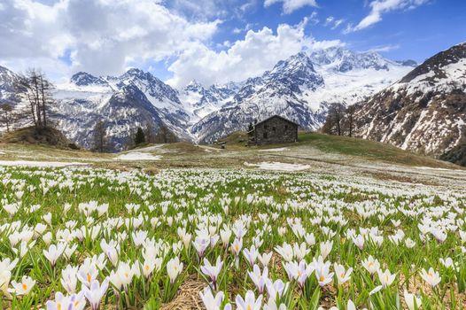 Orobie di marzo annuncia la primavera