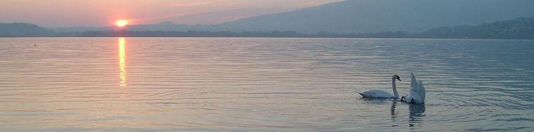 10104_sul-lago-dorato