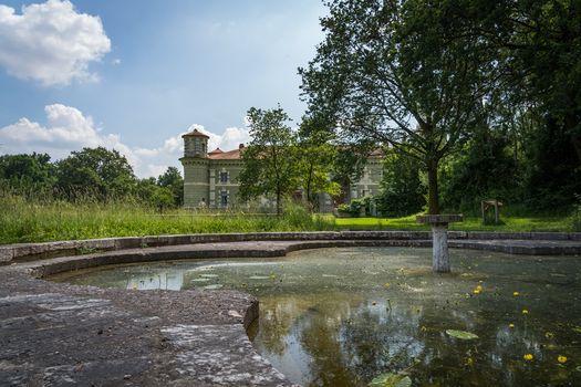Nella riserva Bosco Fontana, l'intervista al ricercatore del Crea