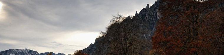 17019_monte-carone