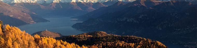 15052_larici-tra-monti-e-lago
