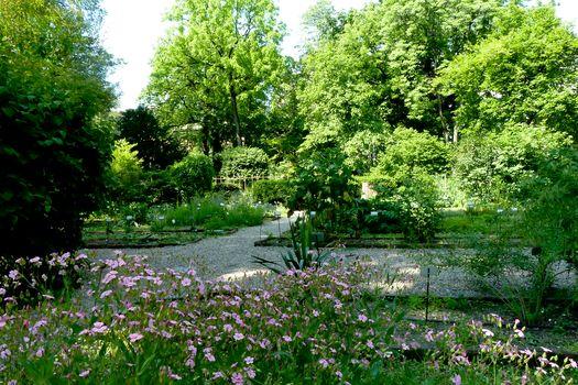 Estate negli Orti botanici lombardi