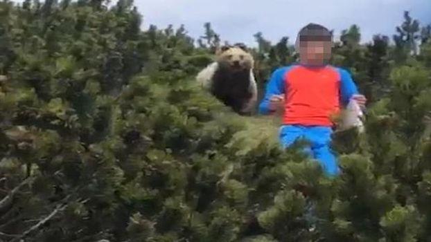 Trentino, incontro tra orso e bambino
