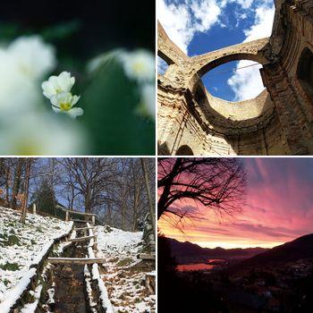 Torna il concorso fotografico del Parco Monte Barro