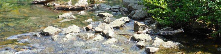11068_lago-saoseo-e-lago-viola