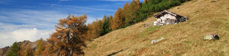 16647_lautunno-colora-la-montagna