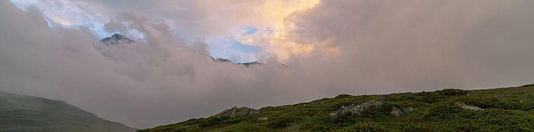 14509_rododendri-tra-le-nebbie