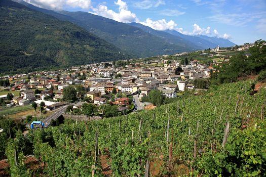 Grappolo d'Oro, vini di montagna in vetrina