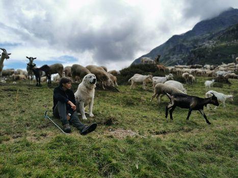 Una raccolta di fondi per Pasturs