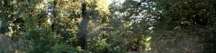 11574_inizio-autunno-al-parco-di-monza