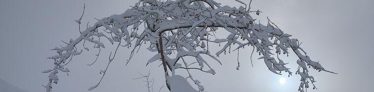 37607_magie-della-neve-_002_jpg.jpg