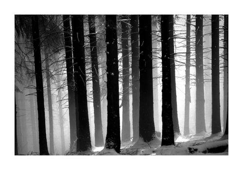 Montagne...in bianco e nero in mostra a Varese