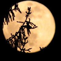Grazie infinite Redazione Orobie , per aver scelto la mia luna :-) Un abbraccio e buon week-end a tutti .