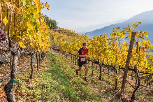 Valtellina wine trail, edizione 2018 by night