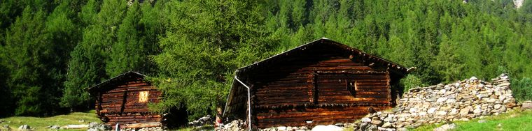 34333_val-zebru-_-rifugio-v-alpini-_25_jpg.jpg