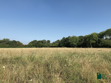 Nuove aree per il Parco Nord di Milano