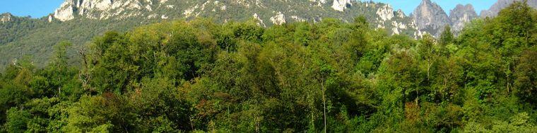 34302_val-monastero-_-anello-delle-cascate-del-cenghen-_14_jpg.jpg