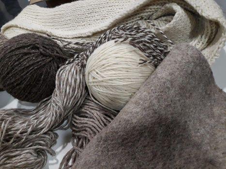 La Val Gandino riscopre la lana bergamasca