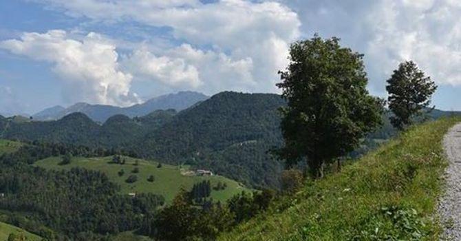 Escursione sul Sentiero dei Grandi Alberi