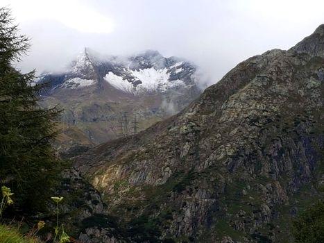 Alpine Seminar a Cà Berizzi e online