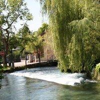 L'acqua della sorgente del Gorgazzo confluisce nel fiume Livenza.