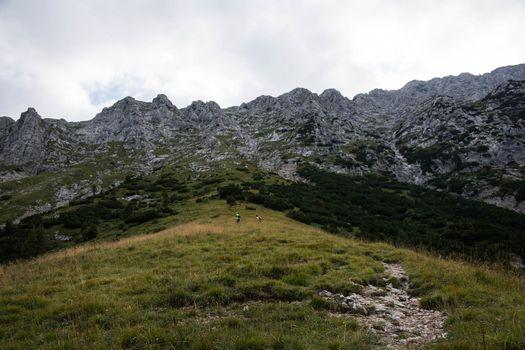Al lavoro per il ritorno in montagna