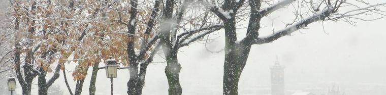 12632_sotto-la-neve