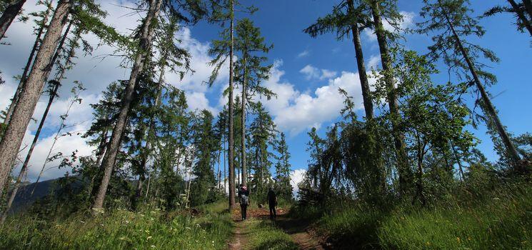 Weekend di escursioni, suoni e gusto