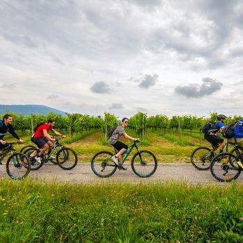 Autunno in bici in Franciacorta
