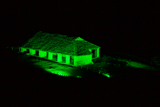 Global Greening, monumenti in verde per San Patrizio