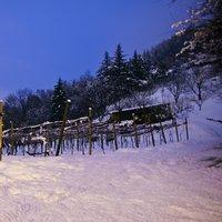 24 febbraio 2013 neve sui vigneti a Scanzorosciate bg