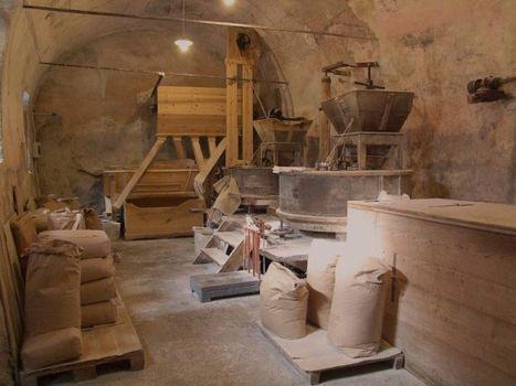 Grani antichi e nuovi sapori in val Borlezza