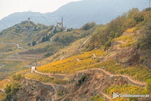 Valtellina Wine Trail, quest'anno si accendono le frontali