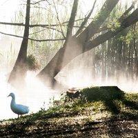 se bella mattinata! poi questo lago regala sempre inquadrature nuove...certo a chi sa vederle ;)
