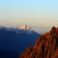 Ho cercato il contrasto in questa foto, mi piaceva  il colore degli alberi illuminati dal primo sole.